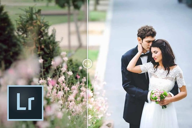 free-lightroom-presets 50+ Best Free Lightroom Presets 2020 design tips