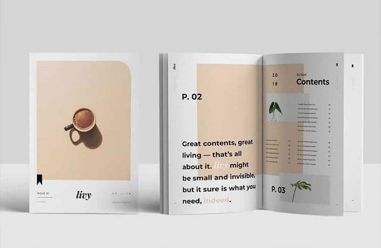 best-indesign-templates-768x500 30+ Best InDesign Templates 2021 (For Brochures, Flyers, Books & More) design tips