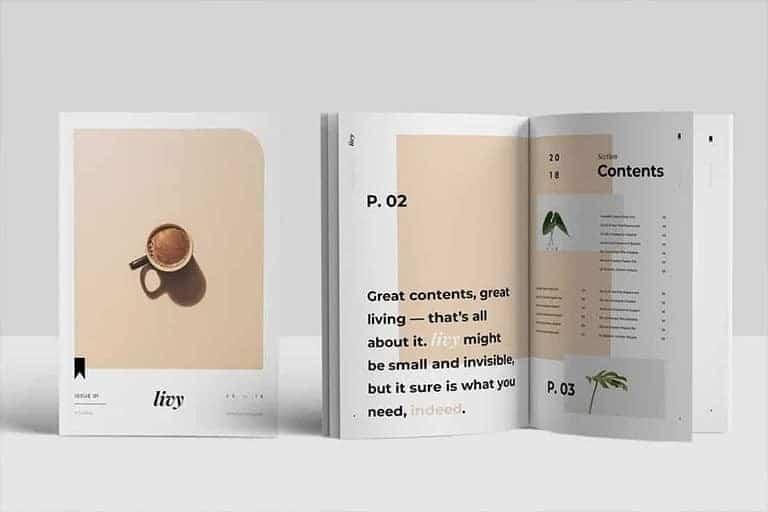 best-indesign-templates 30+ Best InDesign Templates 2021 (For Brochures, Flyers, Books & More) design tips