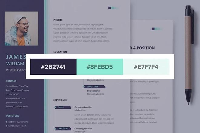 resume-color-schemes 20 Stylish Resume Color Schemes for 2021 design tips