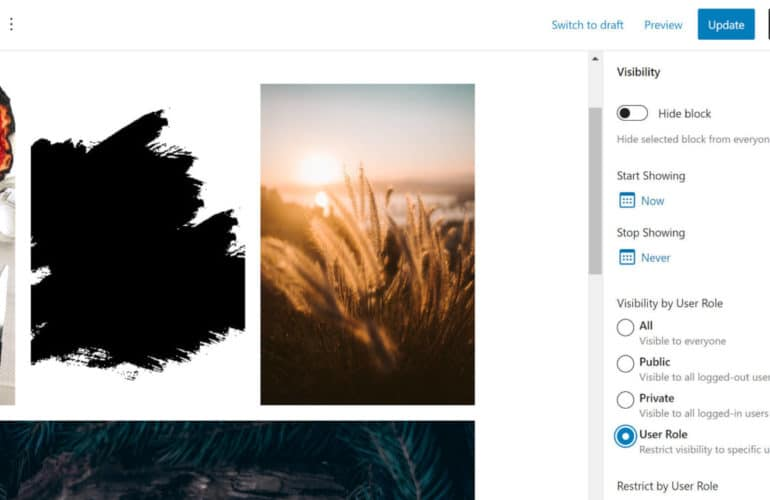 block-visibility-770x500 Show and Hide Content via the Block Visibility WordPress Plugin design tips