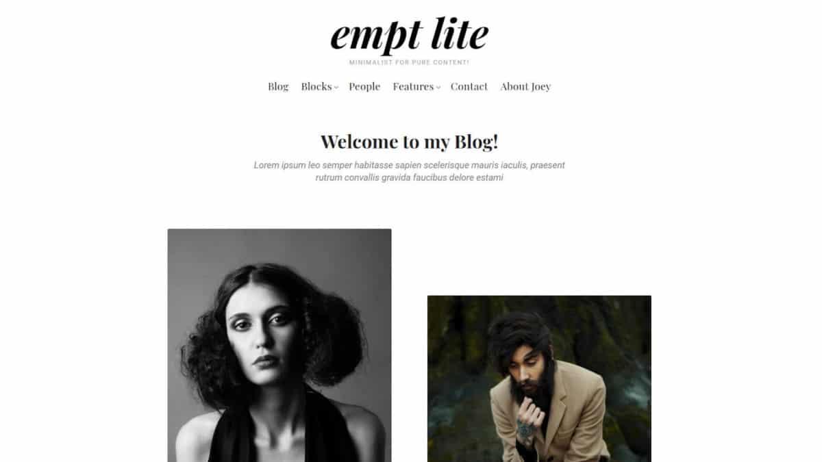 empt-lite-featured Rough Pixels Releases Empt Lite, a Block-Supported Freemium WordPress Theme design tips