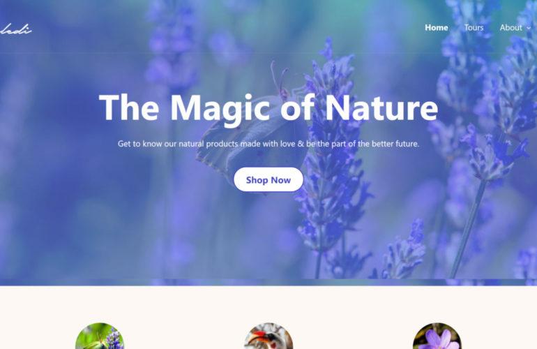 naledi-featured-770x500 Anariel Design Launches Naledi, a Block-Based WordPress Theme design tips