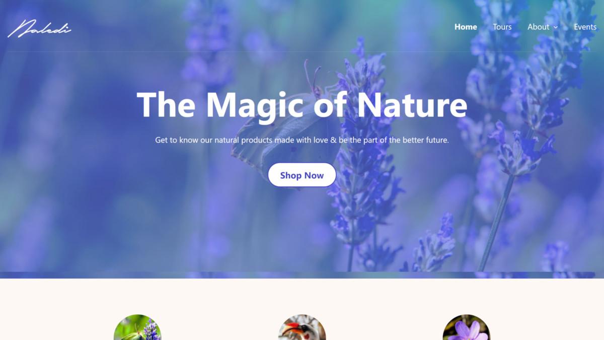 naledi-featured Anariel Design Launches Naledi, a Block-Based WordPress Theme design tips