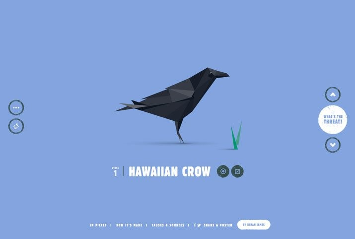species-pieces An Introduction to Animation in Web Design design tips