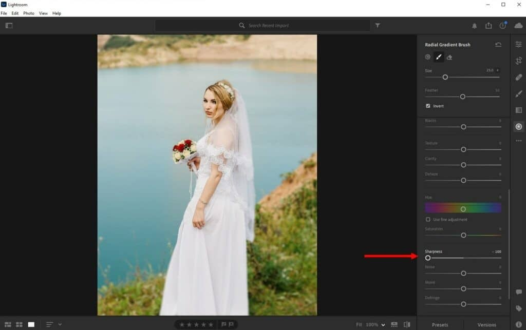 how-to-blur-background-lightroom-cc-2-1-1024x643-1 How to Blur a Background in Lightroom (Step by Step Guide) design tips